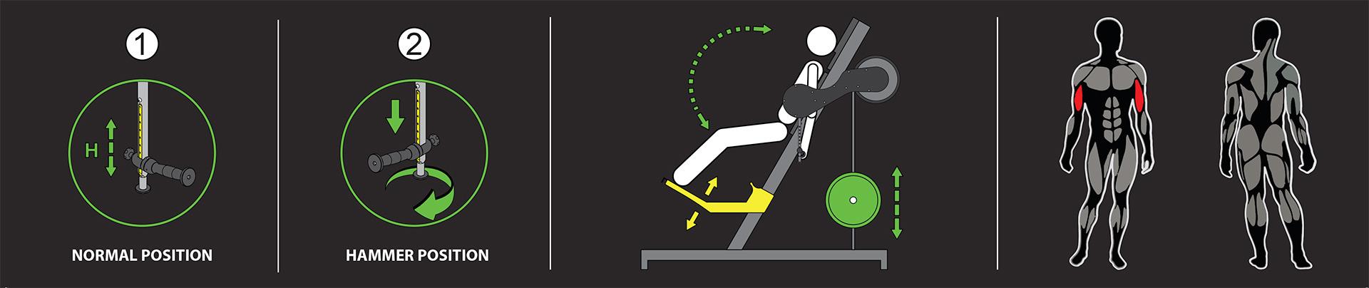 Bicipes-esercizio